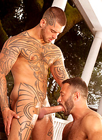 Logan McCree & Wilfried Knight